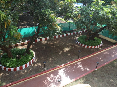 Garden Top View