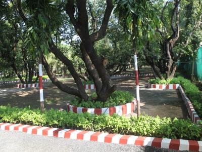 Entrance Area Garden